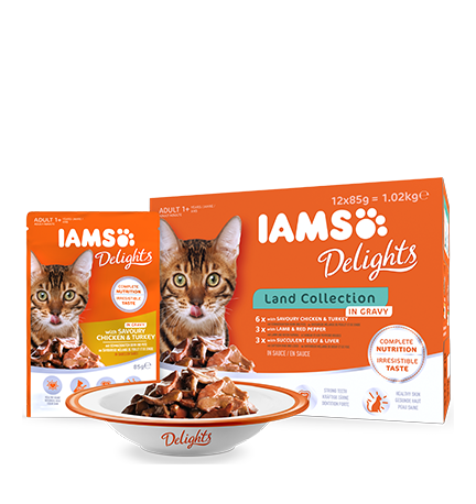 IAMS Delights Land Collection in Gravy